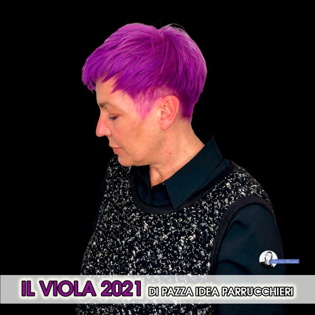 colore capelli viola bello.